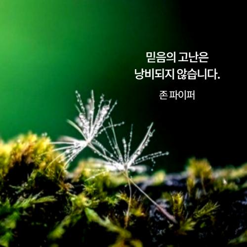 [크기변환]감사카드___복사본_복사본_복사본-008_(1).png